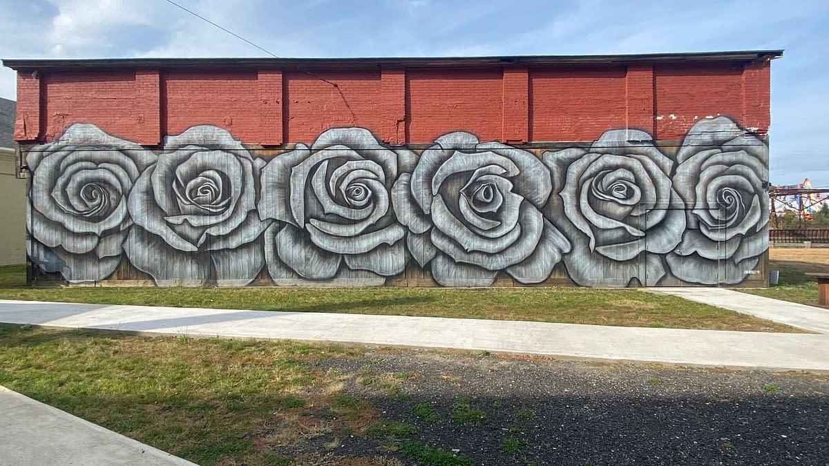Roses 2020 By Jenna Morellao
